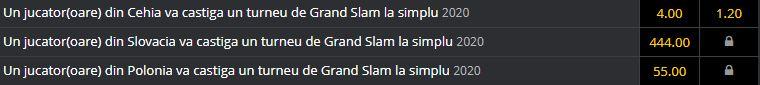 Jucători Cehia, Slovacia şi Polonia, la un turneu de Grand Slam