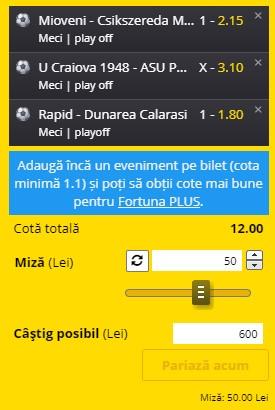 Biletul din Liga 2 se pariază în cotă 12,00. Mioveni și Rapid ne aduc super profit