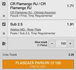 Bilet Copa Libertadores. Profit pe duelurile Flamengo - Olimpia și Atletico Mineiro - River Plate